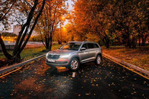 Every Skoda Kodiaq Review is overwhelmingly positive.