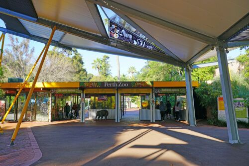 Hit up Perth Zoo